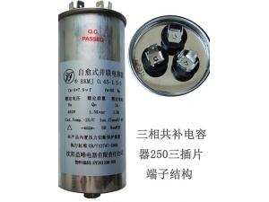三相共补电容器250三插片端子结构