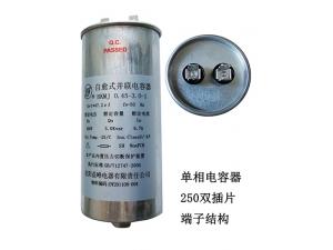 单相电容器250双插端子结构