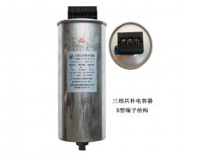 低压滤波电容器B加温控型端子结构